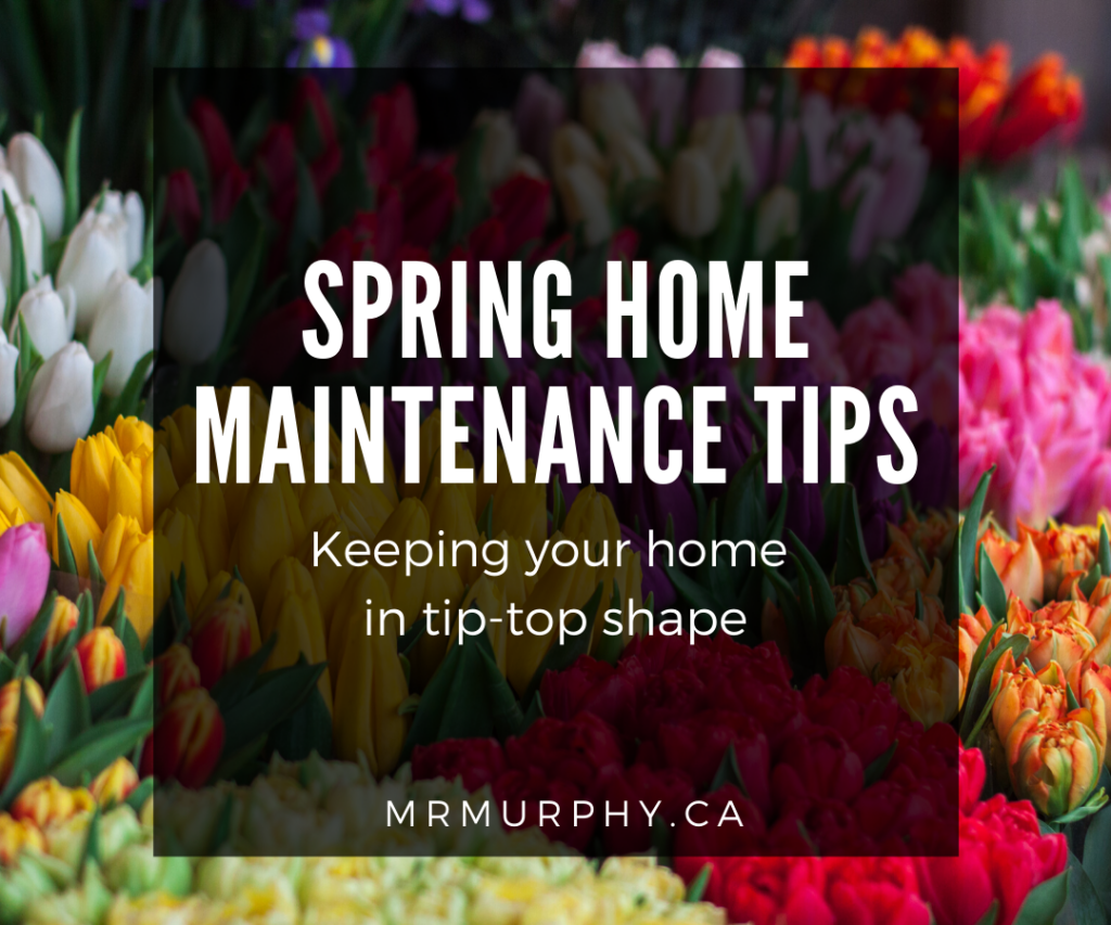 Spring Home Maintenance Tips - Keeping your home in tip-top shape